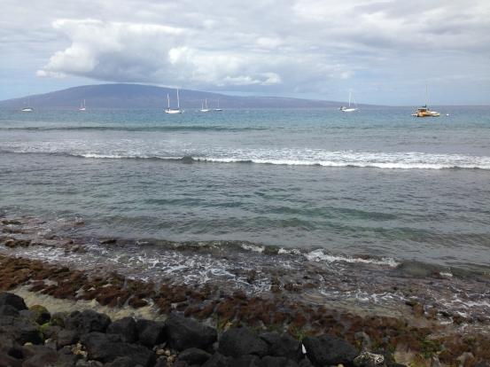 Hawaii_iPhone 5 back camera 4.12mm f:2.4_054