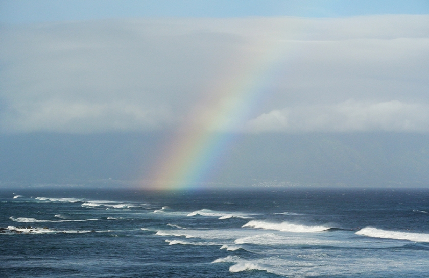 Rainbow_NovSmall
